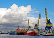 Депутаты Госдумы ставят неутешительный диагноз рыбной отрасли